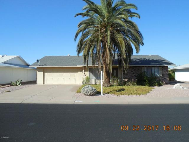 9818 W Royal Oak Road, Sun City, AZ 85351 (MLS #5664194) :: Devor Real Estate Associates
