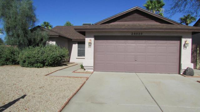 24029 N 39th Lane, Glendale, AZ 85310 (MLS #5664240) :: Devor Real Estate Associates