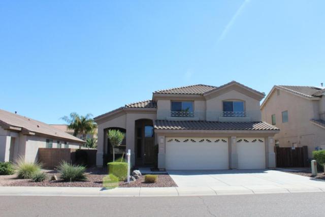 14461 W Hearn Road, Surprise, AZ 85379 (MLS #5664255) :: Devor Real Estate Associates