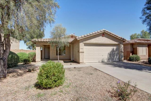 13132 W Fairmont Avenue, Litchfield Park, AZ 85340 (MLS #5664262) :: The AZ Performance Realty Team