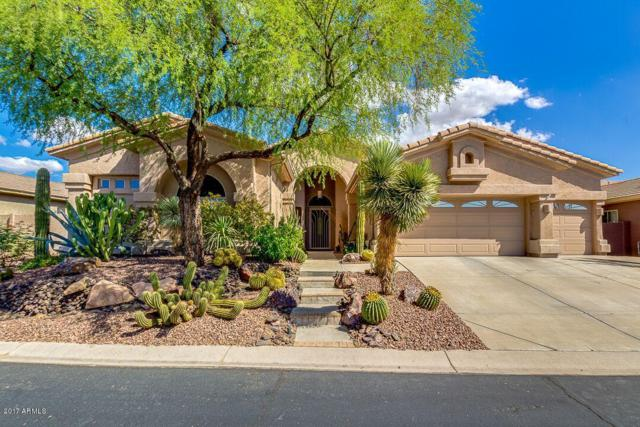 31853 N 53RD Street, Cave Creek, AZ 85331 (MLS #5664353) :: The Daniel Montez Real Estate Group