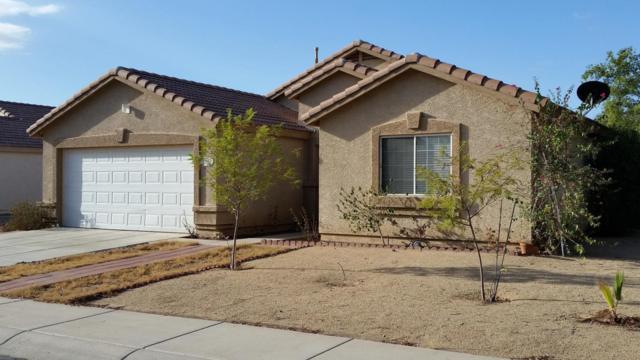 12739 W Larkspur Road, El Mirage, AZ 85335 (MLS #5664366) :: Devor Real Estate Associates