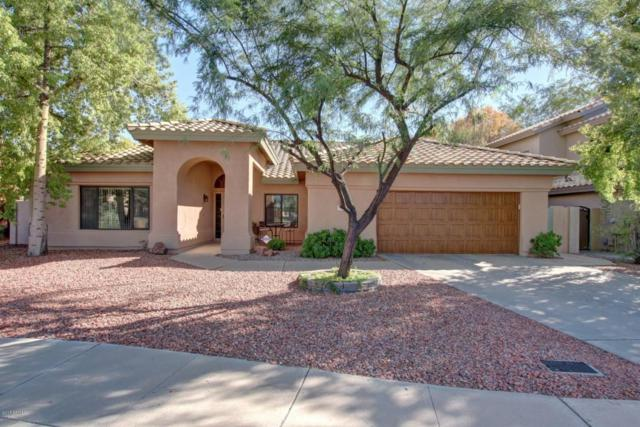 31 W Buena Vista Drive, Tempe, AZ 85284 (MLS #5664372) :: The Kenny Klaus Team