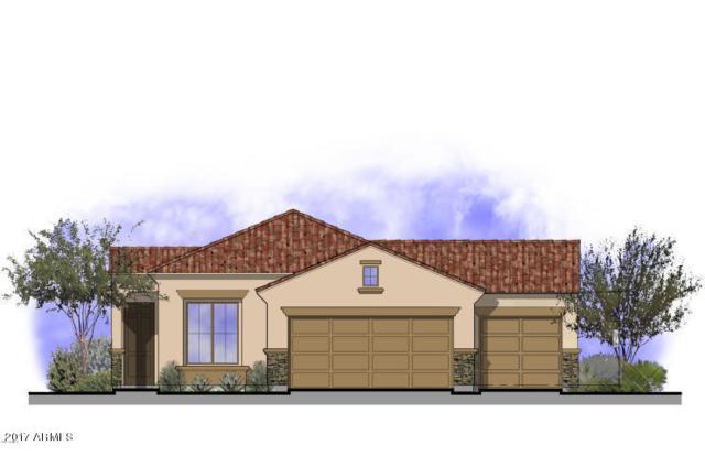 11951 W Rio Vista Lane, Avondale, AZ 85323 (MLS #5664408) :: The AZ Performance Realty Team