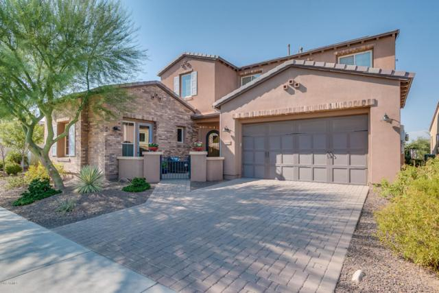 1636 E Sattoo Way, San Tan Valley, AZ 85140 (MLS #5664436) :: The Pete Dijkstra Team