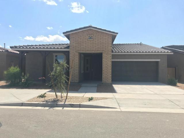 22443 E Munoz Street, Queen Creek, AZ 85142 (MLS #5664449) :: The Pete Dijkstra Team