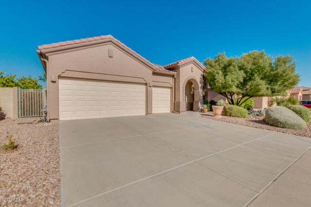 2049 N 135TH Drive, Goodyear, AZ 85395 (MLS #5664489) :: The Daniel Montez Real Estate Group