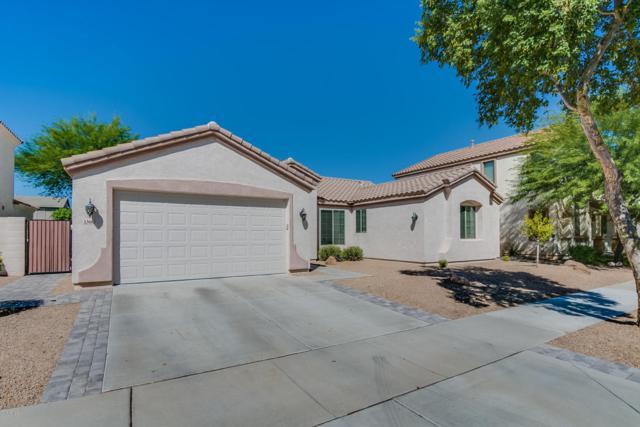 13662 W Evans Drive, Surprise, AZ 85379 (MLS #5664518) :: The Worth Group