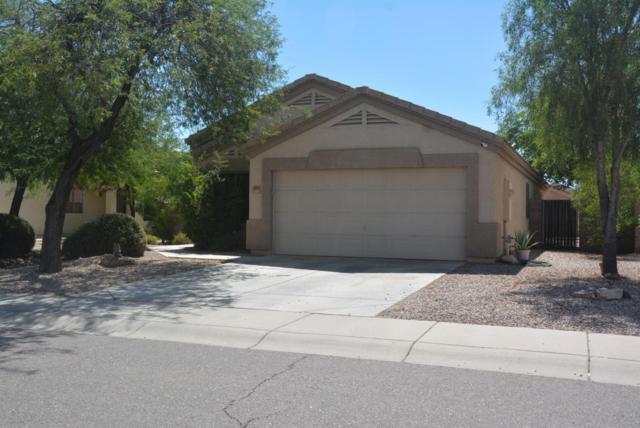 2451 W Hayden Peak Drive, Queen Creek, AZ 85142 (MLS #5664521) :: The Pete Dijkstra Team