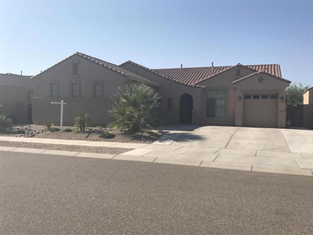 17803 W Dreyfus Street, Surprise, AZ 85388 (MLS #5664528) :: The Worth Group