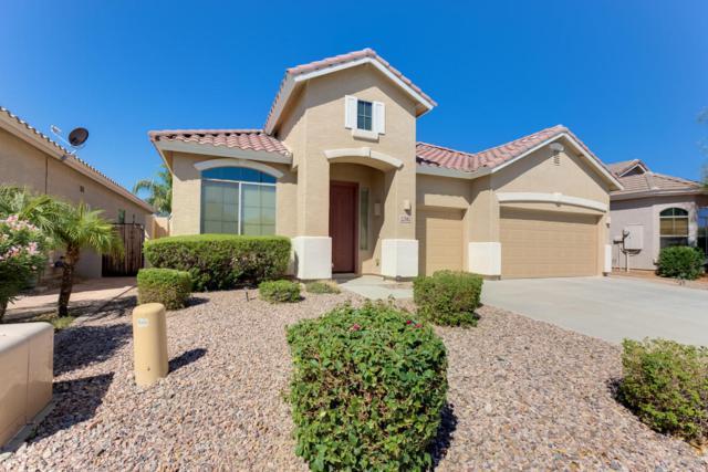 22182 N 104TH Lane, Peoria, AZ 85383 (MLS #5664540) :: The Worth Group