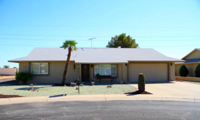 9305 W Wild Horse Court, Sun City, AZ 85373 (MLS #5664566) :: The Pete Dijkstra Team