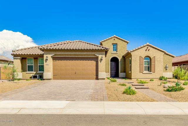 24831 N 79TH Lane, Peoria, AZ 85383 (MLS #5664577) :: The AZ Performance Realty Team
