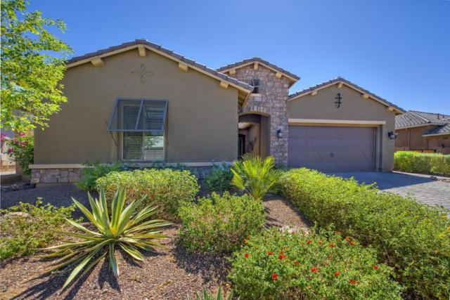 5329 E Palo Brea Lane, Cave Creek, AZ 85331 (MLS #5664588) :: The Daniel Montez Real Estate Group