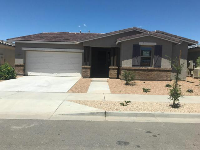 22450 E Duncan Street, Queen Creek, AZ 85142 (MLS #5664609) :: Santizo Realty Group