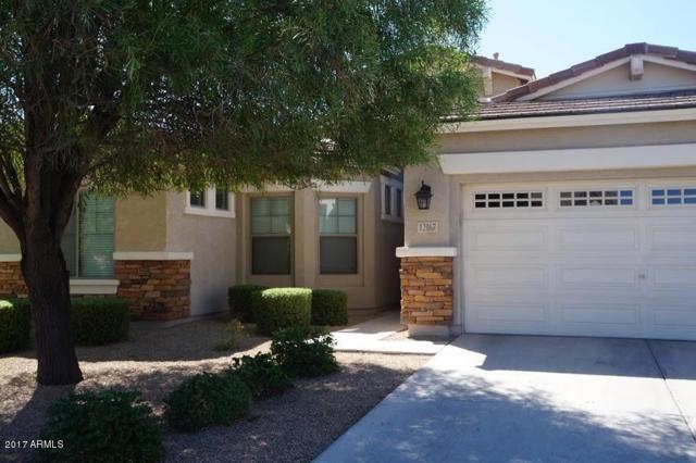 12167 W Mountain View Drive, Avondale, AZ 85323 (MLS #5664614) :: The AZ Performance Realty Team