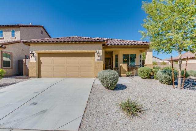23584 W Harrison Drive, Buckeye, AZ 85326 (MLS #5664616) :: Rodney Barnes Real Estate