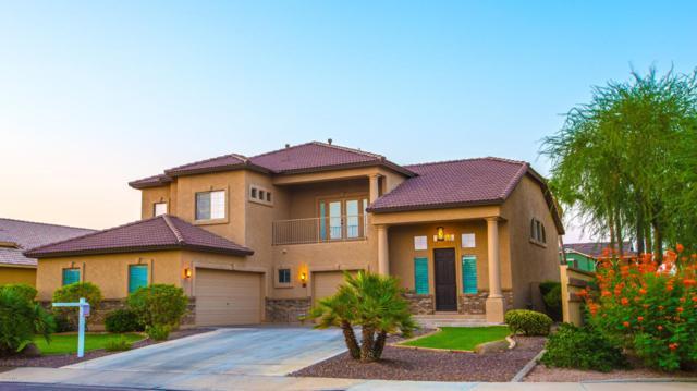 3719 E Loma Vista Street, Gilbert, AZ 85295 (MLS #5664630) :: The Worth Group