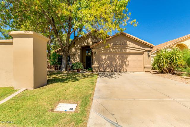 2302 E Gondola Lane, Gilbert, AZ 85234 (MLS #5664711) :: Santizo Realty Group