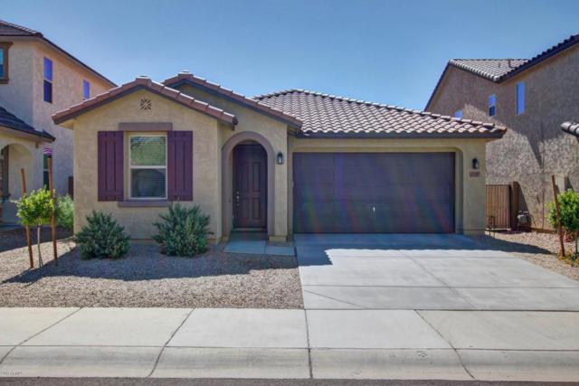 13207 W Rowel Road, Peoria, AZ 85383 (MLS #5664767) :: The Daniel Montez Real Estate Group