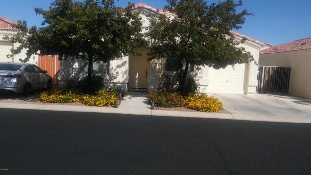 141 N Warren Street, Mesa, AZ 85207 (MLS #5664784) :: The Kenny Klaus Team