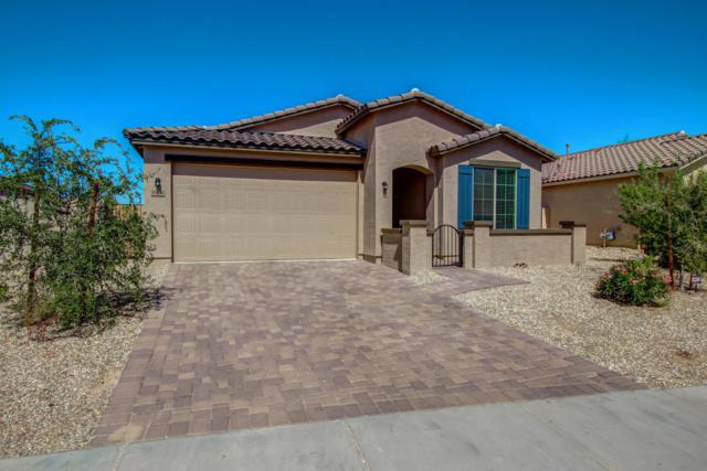 10858 W Woodland Avenue, Avondale, AZ 85323 (MLS #5664840) :: The AZ Performance Realty Team