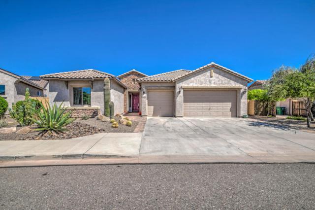 18164 W Las Palmaritas Drive, Waddell, AZ 85355 (MLS #5664844) :: The AZ Performance Realty Team