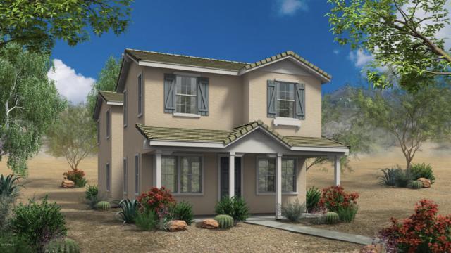 2268 S Henry Lane, Gilbert, AZ 85295 (MLS #5664893) :: Santizo Realty Group