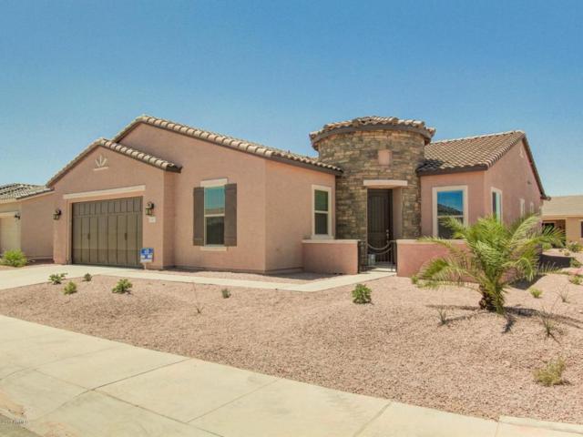 41697 W Snow Bird Lane, Maricopa, AZ 85138 (MLS #5664916) :: The Daniel Montez Real Estate Group