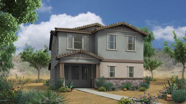 3885 E Stiles Lane, Gilbert, AZ 85295 (MLS #5664951) :: Santizo Realty Group