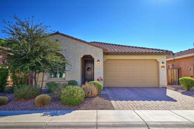 25905 N 122ND Lane, Peoria, AZ 85383 (MLS #5664963) :: The Daniel Montez Real Estate Group