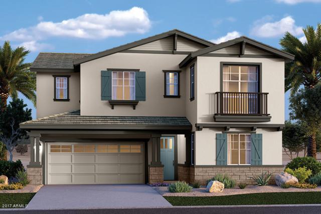 55 N Abalone Court, Gilbert, AZ 85233 (MLS #5664998) :: Santizo Realty Group