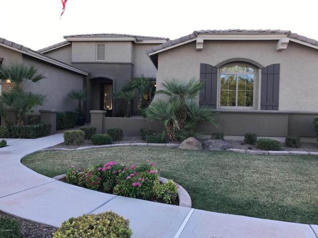 41442 N Vicki Street, San Tan Valley, AZ 85140 (MLS #5665036) :: Revelation Real Estate