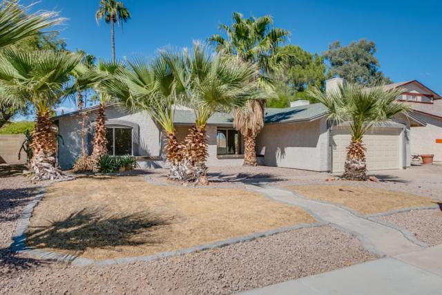 4608 W Jupiter Way, Chandler, AZ 85226 (MLS #5665046) :: Santizo Realty Group