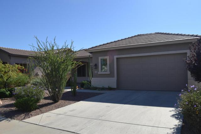 14883 W Poinsettia Drive, Surprise, AZ 85379 (MLS #5665070) :: The Daniel Montez Real Estate Group