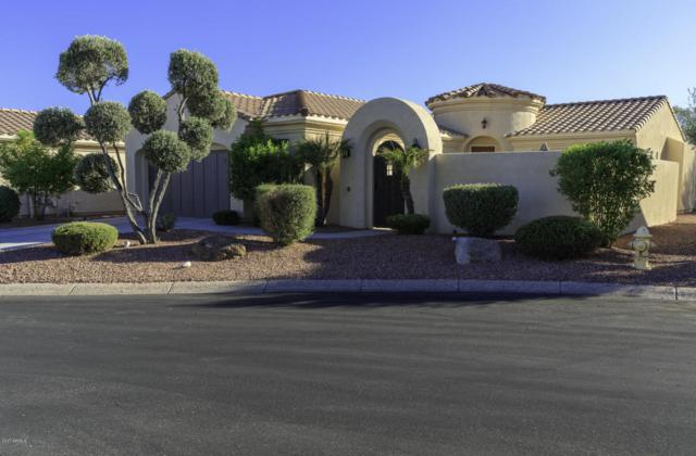 23310 N De La Guerra Court, Sun City West, AZ 85375 (MLS #5665082) :: The Daniel Montez Real Estate Group