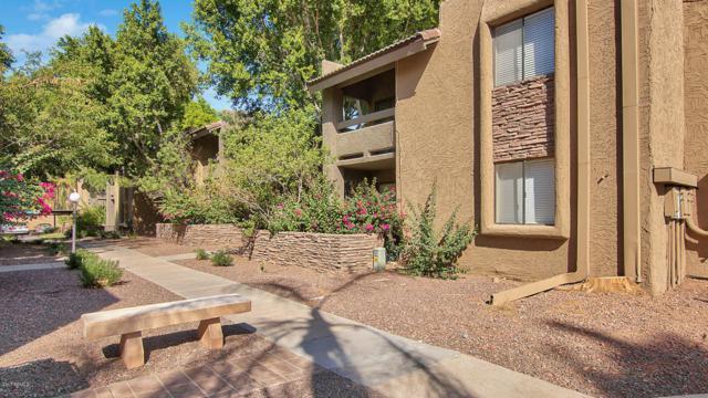 3825 E Camelback Road #261, Phoenix, AZ 85018 (MLS #5665102) :: Santizo Realty Group