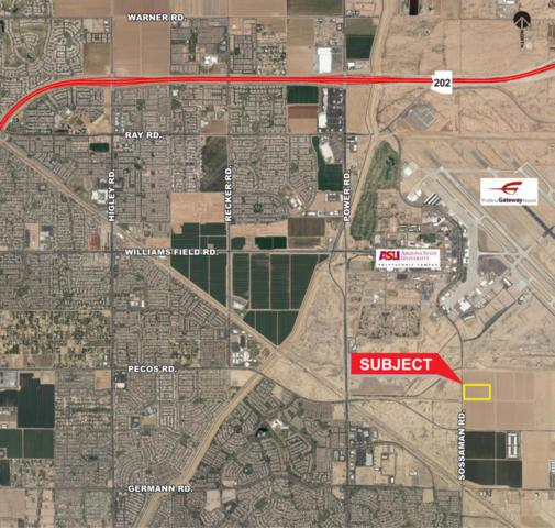 6933 S Sossaman Road, Queen Creek, AZ 85142 (MLS #5665106) :: Santizo Realty Group