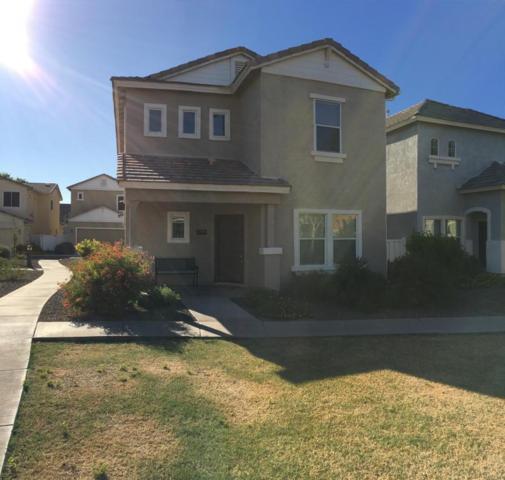 1359 S Minneola Lane, Gilbert, AZ 85296 (MLS #5665137) :: Santizo Realty Group