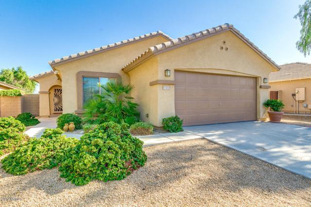 17233 W Banff Lane, Surprise, AZ 85388 (MLS #5665142) :: The Daniel Montez Real Estate Group