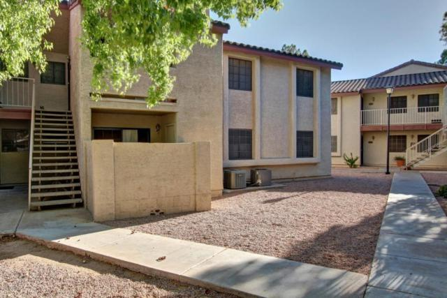 533 W Guadalupe Road #1063, Mesa, AZ 85210 (MLS #5665149) :: Santizo Realty Group