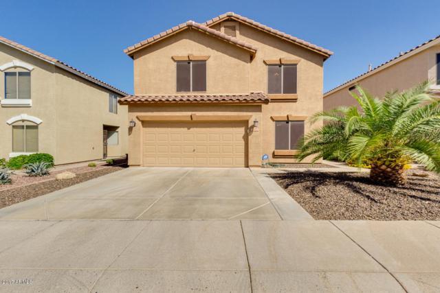 1112 E Monona Drive, Phoenix, AZ 85024 (MLS #5665160) :: Santizo Realty Group