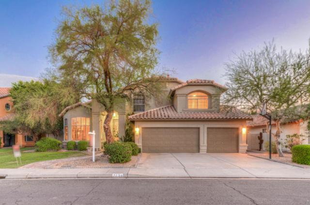 7735 W Kimberly Way, Glendale, AZ 85308 (MLS #5665174) :: Santizo Realty Group