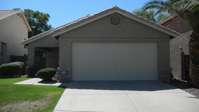 5021 W Oraibi Drive, Glendale, AZ 85308 (MLS #5665178) :: Santizo Realty Group