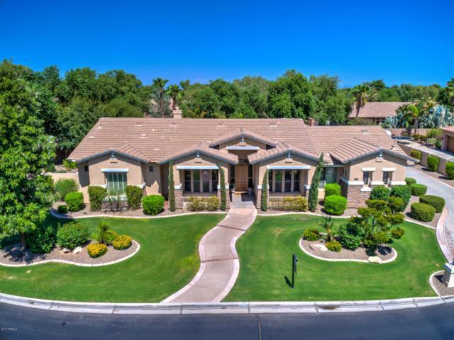 266 E Bridgeport Parkway, Gilbert, AZ 85295 (MLS #5665184) :: Santizo Realty Group