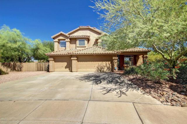 29023 N 46TH Way, Cave Creek, AZ 85331 (MLS #5665188) :: The Daniel Montez Real Estate Group