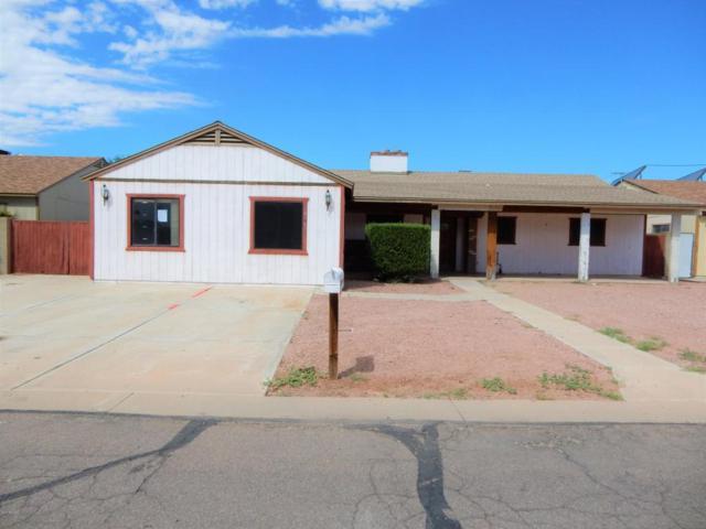 14216 N 45TH Drive, Glendale, AZ 85306 (MLS #5665204) :: Santizo Realty Group