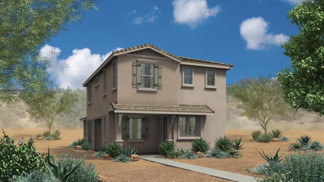 2241 S Wallrade Lane, Gilbert, AZ 85295 (MLS #5665209) :: Santizo Realty Group