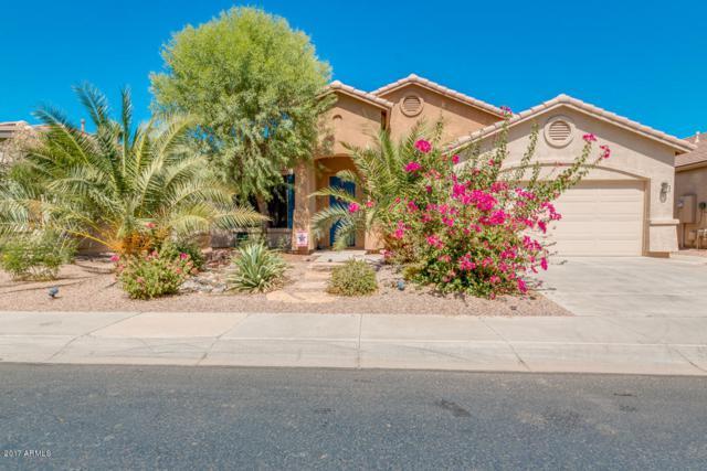 43394 W Lindgren Drive, Maricopa, AZ 85138 (MLS #5665213) :: The Daniel Montez Real Estate Group