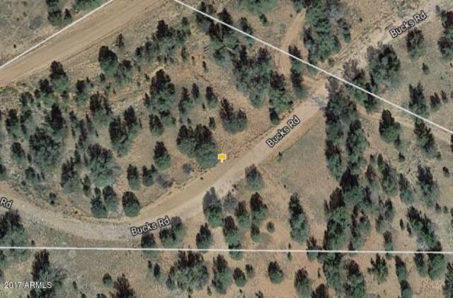 32445 W Bucks Road, Seligman, AZ 86337 (MLS #5665214) :: Brett Tanner Home Selling Team